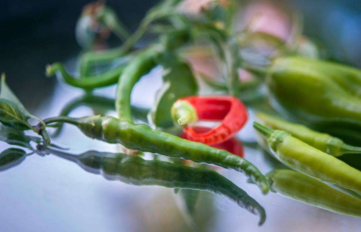 Habanero papryczki - oparzenia: jak leczyć?